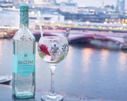 Bloom Gin Case Study - MPR Communications